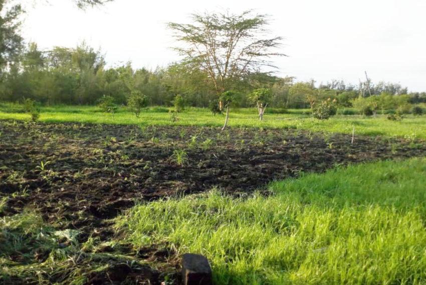 Kinanie Plots Mombasa Rd (13)