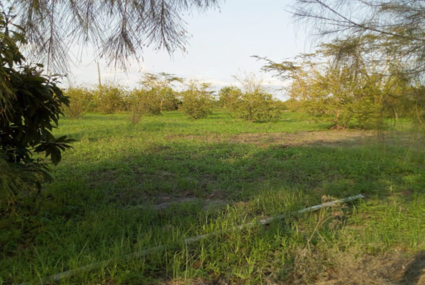 Kinanie Plots Mombasa Rd (2)