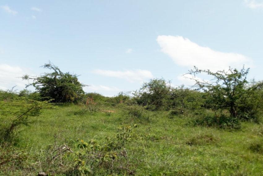 Kinanie Plots Mombasa Rd (4)