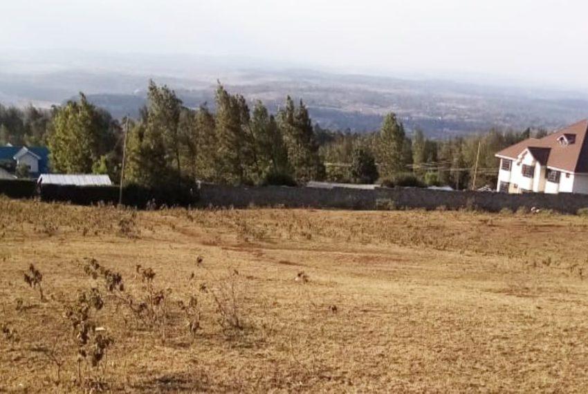 Ngong_Kibiku (8)